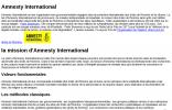 国际特赦组织布基纳法索