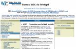 W3C塞加内尔