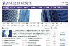 武汉远城科技发展有限公司首页图片
